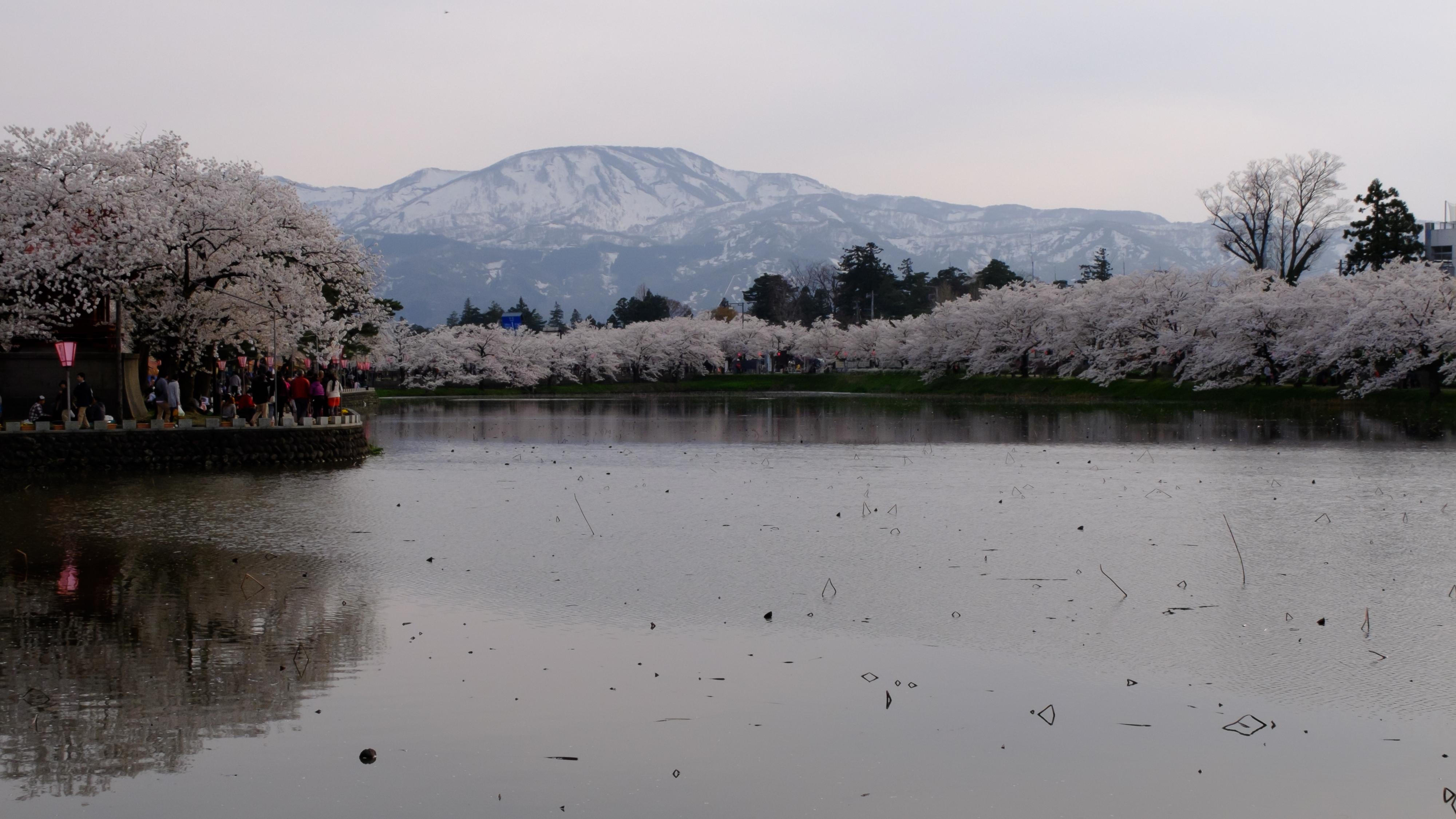 http://www.art-photo.jp/blog/archives/images/2014.04.12/2015.04.12_11.jpg